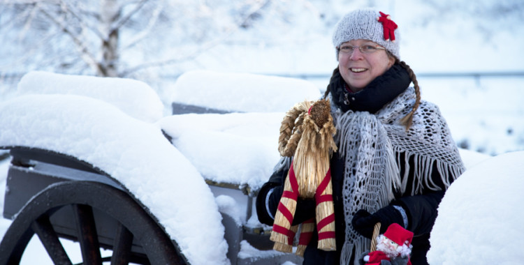 Porvoon matkailuoppaat Jouluopastukset 2017
