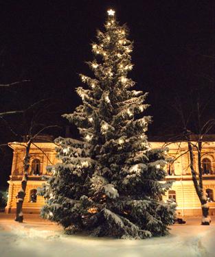 Joulukuusi Porvoon kaupungintalon edustalla